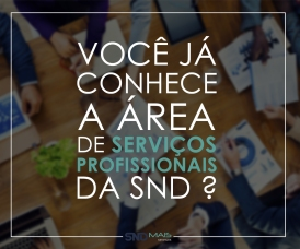 blogsnd_servicos_post-facebook-e-linkedin-csp-versao-21